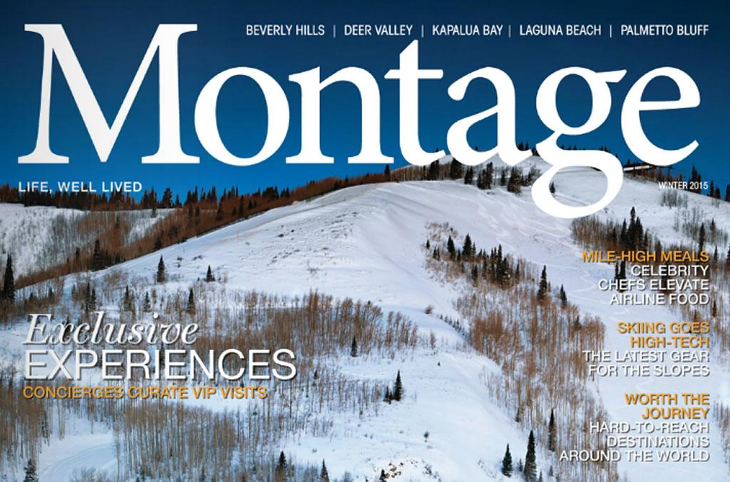 montage-1024x676