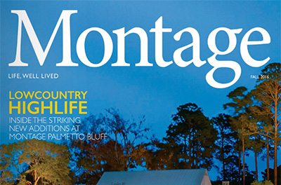 montage-fall-featured